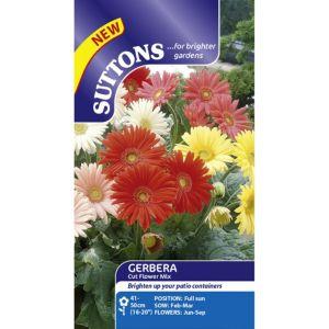 Suttons Cut flowers mix Seeds Non GM