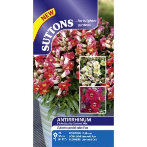 Image of Suttons Antiquity Sunset Seeds Non Gm