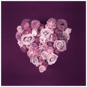 View Purple Heart Roses Pink & Purple Wall Art (W)50cm (H)50cm details