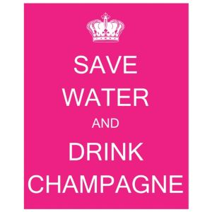 View Save Water Drink Champagne Pink & White Canvas details