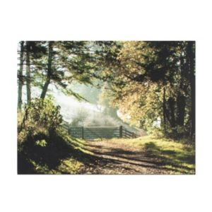 Image of Forest Walk Brown & Green Canvas Art (W)800mm (H)600mm