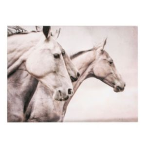 View Wild Horses Black & White Canvas (W)80cm (H)60cm details