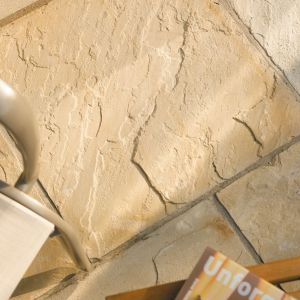 View Fossil Buff Natural Sandstone Paving Slab (L)600mm (W)600mm details