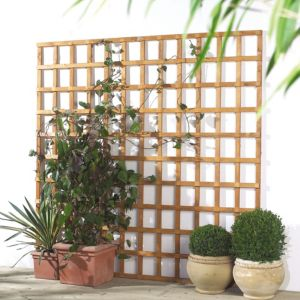 View Traditional Timber Square Trellis Panel (H)1.83m (W)1.2m details