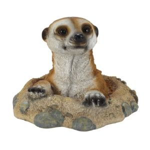 View In My Garden Meerkat Ornament details