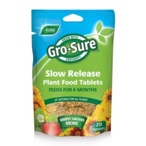 View Westland Gro-Sure Slow Release Plant Food, Pack of 20 details