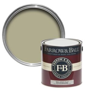 Image of Farrow & Ball Ball Green no.75 Matt Estate emulsion paint 2.5L