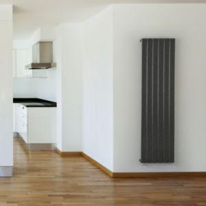 Image of Seren Égalrad Type 10 single Designer panel radiator Gun metal (H)1800mm (W)505mm