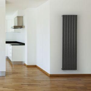 Image of Seren Égalrad Type 10 single Designer panel radiator Gun metal (H)1800mm (W)578mm