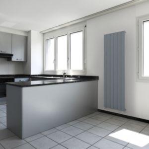 Image of Seren Égalrad Type 10 single Designer panel radiator Matt silver (H)1800mm (W)505mm