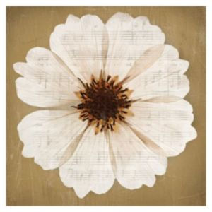 View Anenomes Flower Cream & Gold Wall Art (W)57cm x (H)57cm details