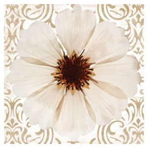 View Anenomes Flower Brown & Cream Wall Art (W)57cm x (H)57cm details