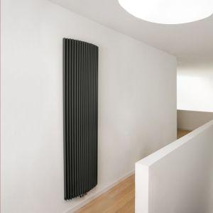 Image of Jaga Iguana Arco Vertical Radiator Sandblast grey (H)1800 mm (W)410 mm