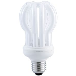 View Diall Edison Screw Cap (E27) 24W Fluorescent Stick Light Bulb details
