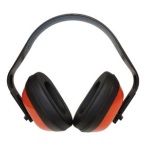 View Diall Ear Defenders details