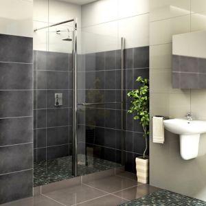 Aquadry Rectangular Shower Screen Front Panel with Pivot Splash Panel (W)900mm