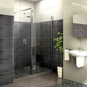 Image of Aquadry Front panel & pivoting splash panel with Walk-in entry (W)700mm