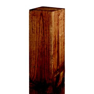 View Blooma Timber Fence Post (H)2.4m details