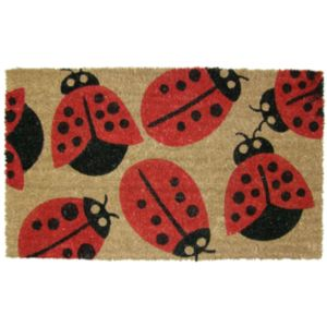 View Colours Cappara Multicolour Coir Door Mat (L)750mm (W)450mm details