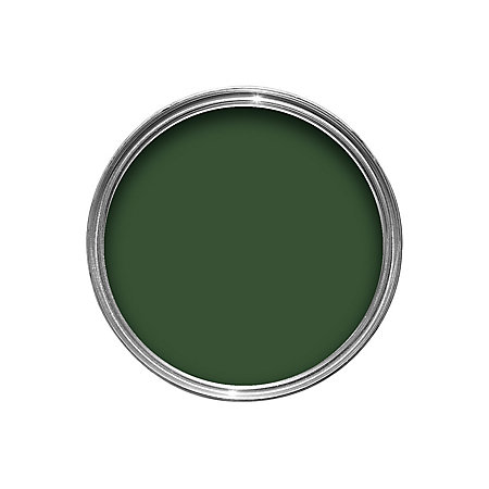 Colours Exterior Buckingham Green Gloss Wood Metal Paint 2 5l Departments Diy At B Q