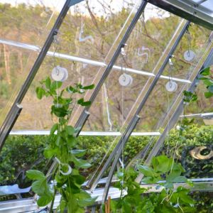 View Palram Plastic Greenhouse Trellis Kit details
