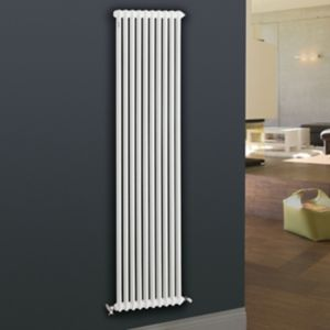 View Acova 2 Column Radiator, White (W)490 mm (H)2000 mm details