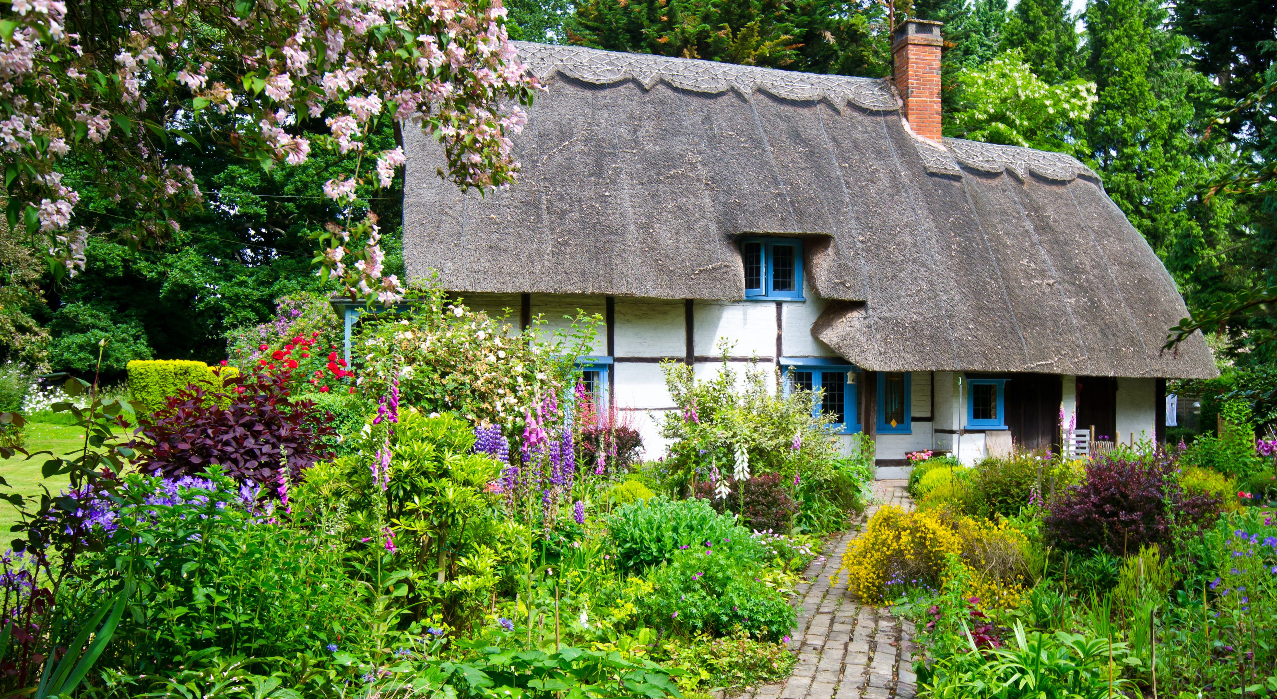 Cottage Garden Ideas Ideas Amp Advice Diy At B Amp Q