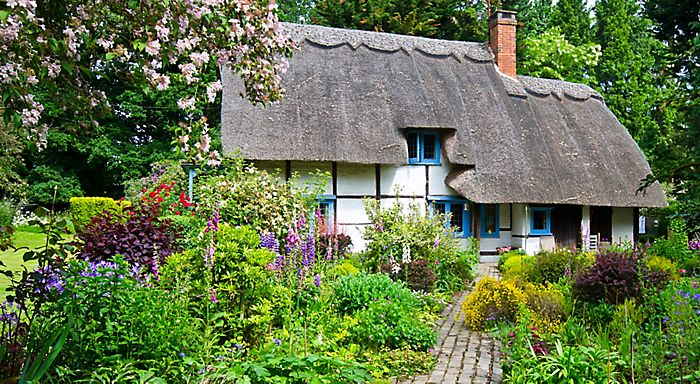 Cottage Garden Ideas love the hardscape and the container is gorgeous i would prefer hot pink cottage garden designgarden Country Garden