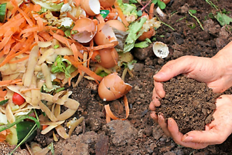 Compost to create soil conditioner
