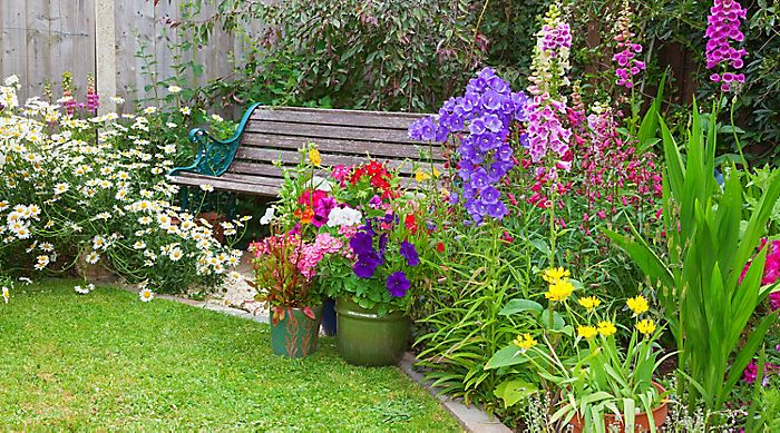 """garden with bedding plants"""