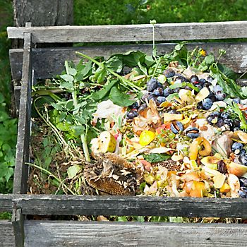 make a compost heap