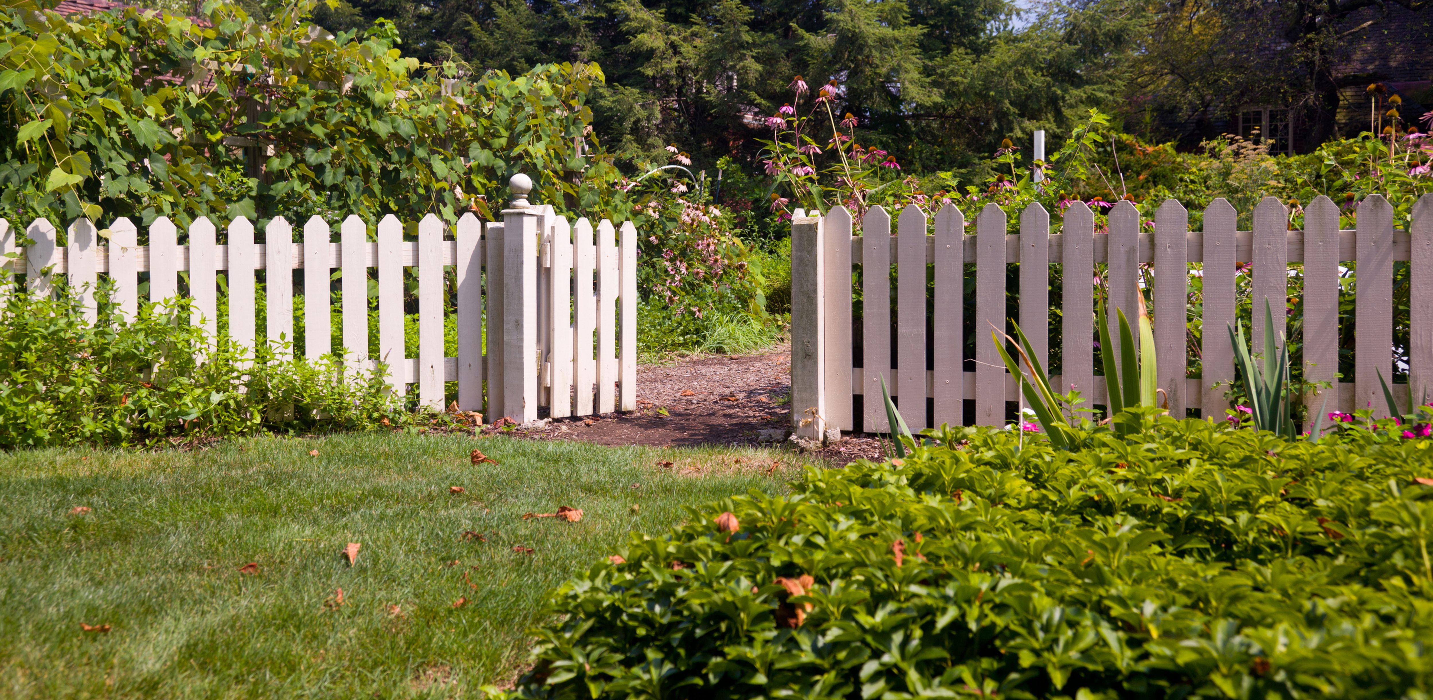 Fence Amp Railing Buying Guide Help Amp Ideas Diy At B Amp Q