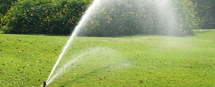 Lawn being watered with sprinkler