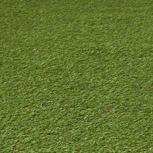 Image of Dennis Artificial grass 8m² (T)22mm