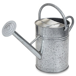 Steel Watering can 12L