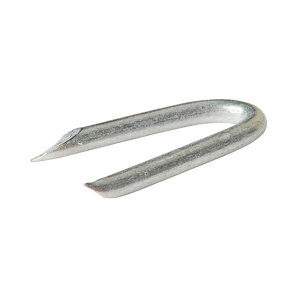 Image of Diall Wire staples (H)25mm (Dia)2.7mm 125g Pack