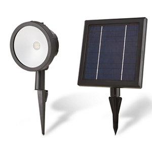 Blooma Poplar Matt Black Solar-powered LED External Spike light