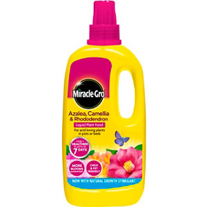 Image of Miracle Gro Azalea camellia & rhododendron Liquid Plant feed 1L