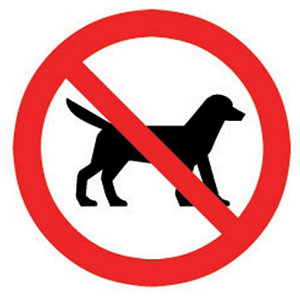 Image of No dogs allowed Self-adhesive labels (H)100mm (W)100mm