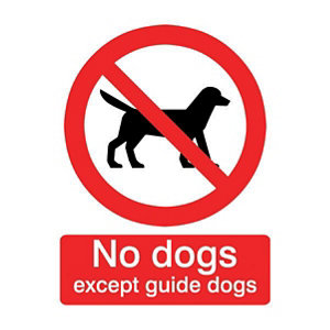 Image of No dogs except guide dogs Self-adhesive labels (H)100mm (W)100mm