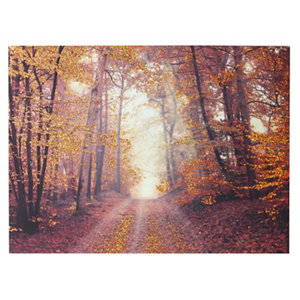 Image of Autumn woodland Copper Canvas art (H)570mm (W)770mm