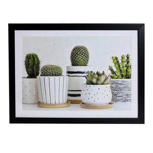 Image of Cactus Green Framed print (H)300mm (W)400mm