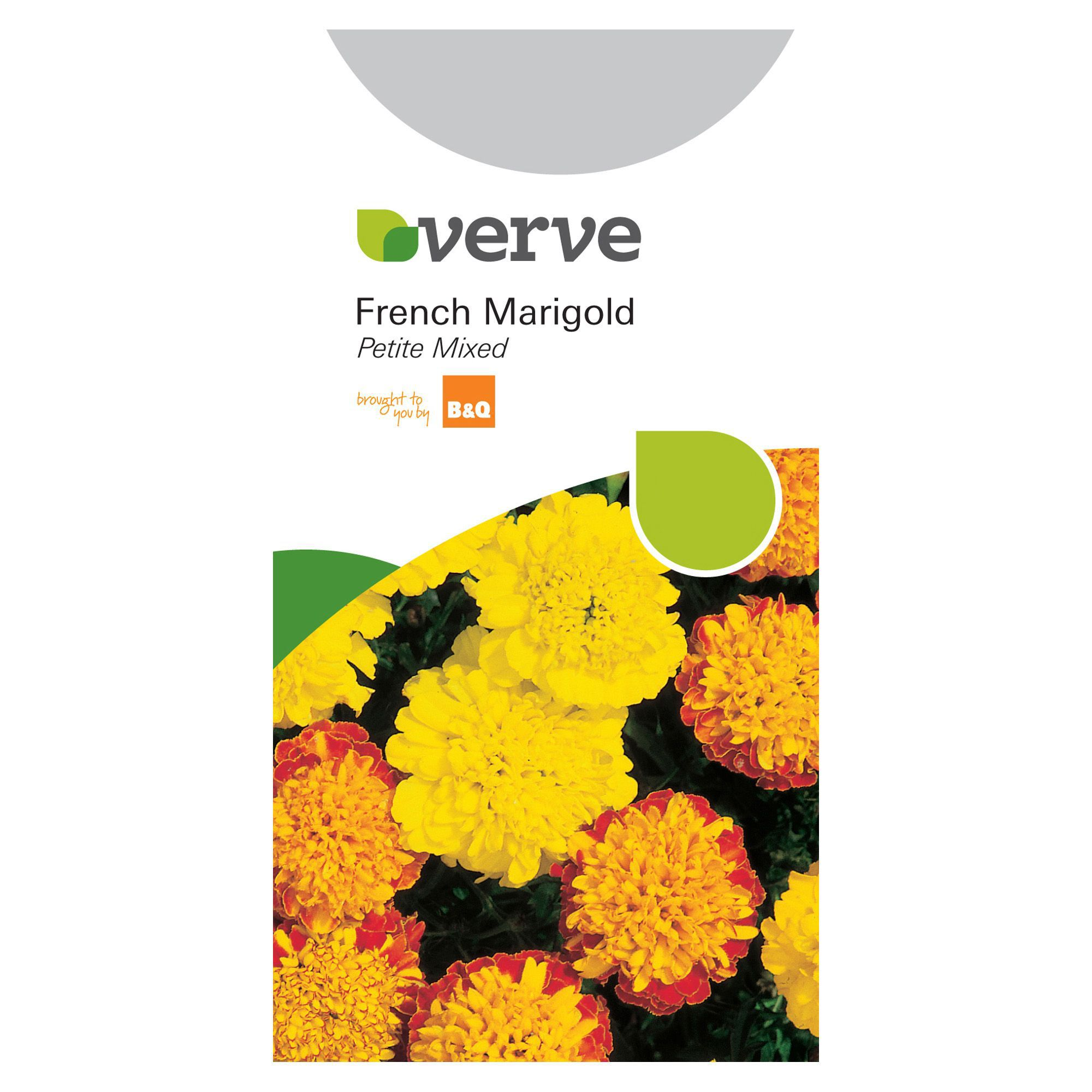 Verve French Marigold Seeds Petite Mix Departments