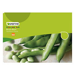 Verve Broad Bean Seeds, Aquadulce Claudia Mix
