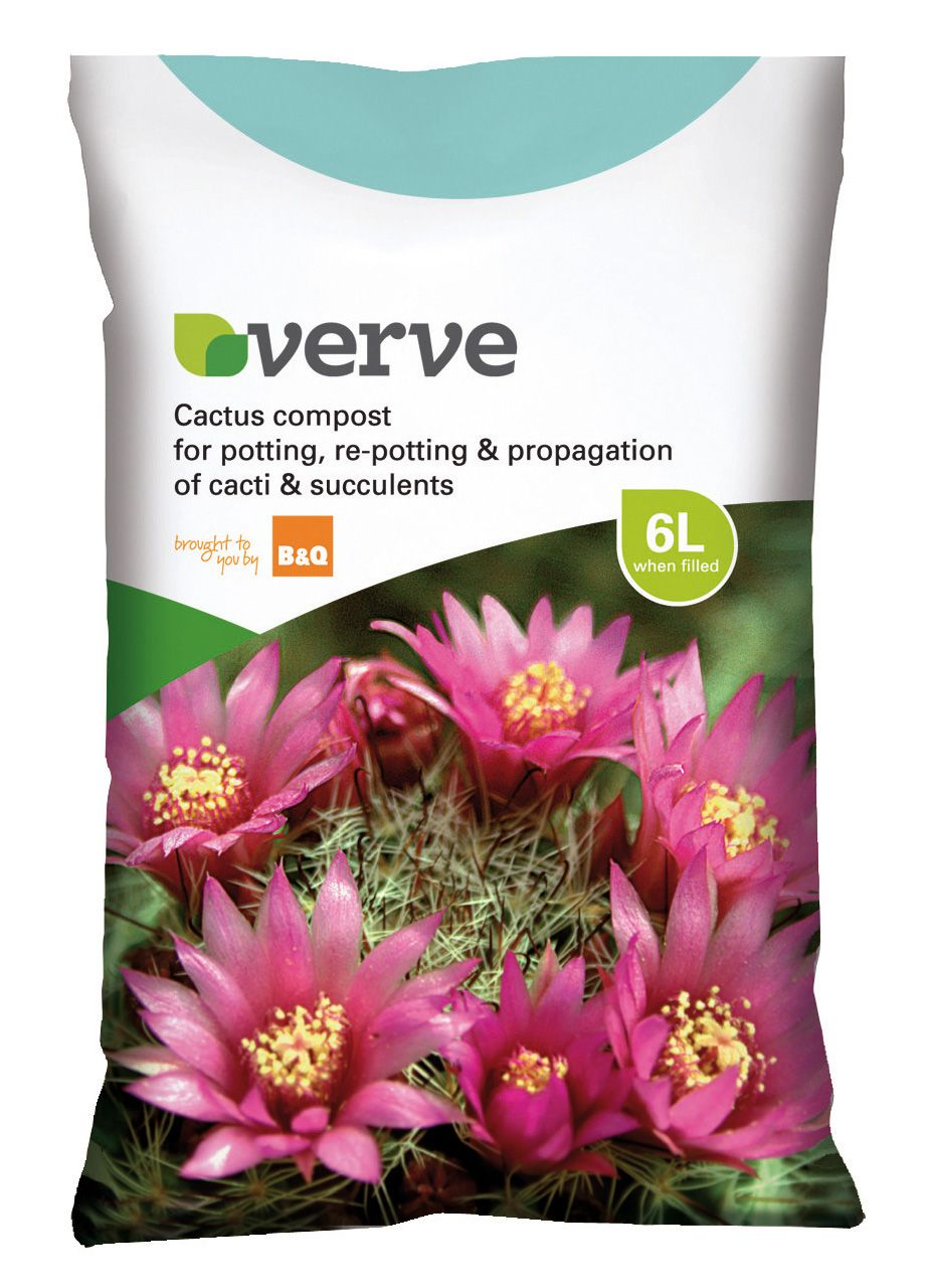 Verve Cactus Compost 6l Departments Diy At B Amp Q