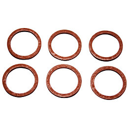 Plumbsure Fibre Washer, Pack of 6