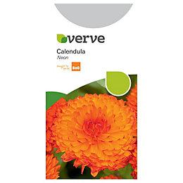 Verve Calendula Seeds, Neon Mix