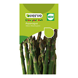 Verve Asparagus Pea Seeds, Mary Washington Mix