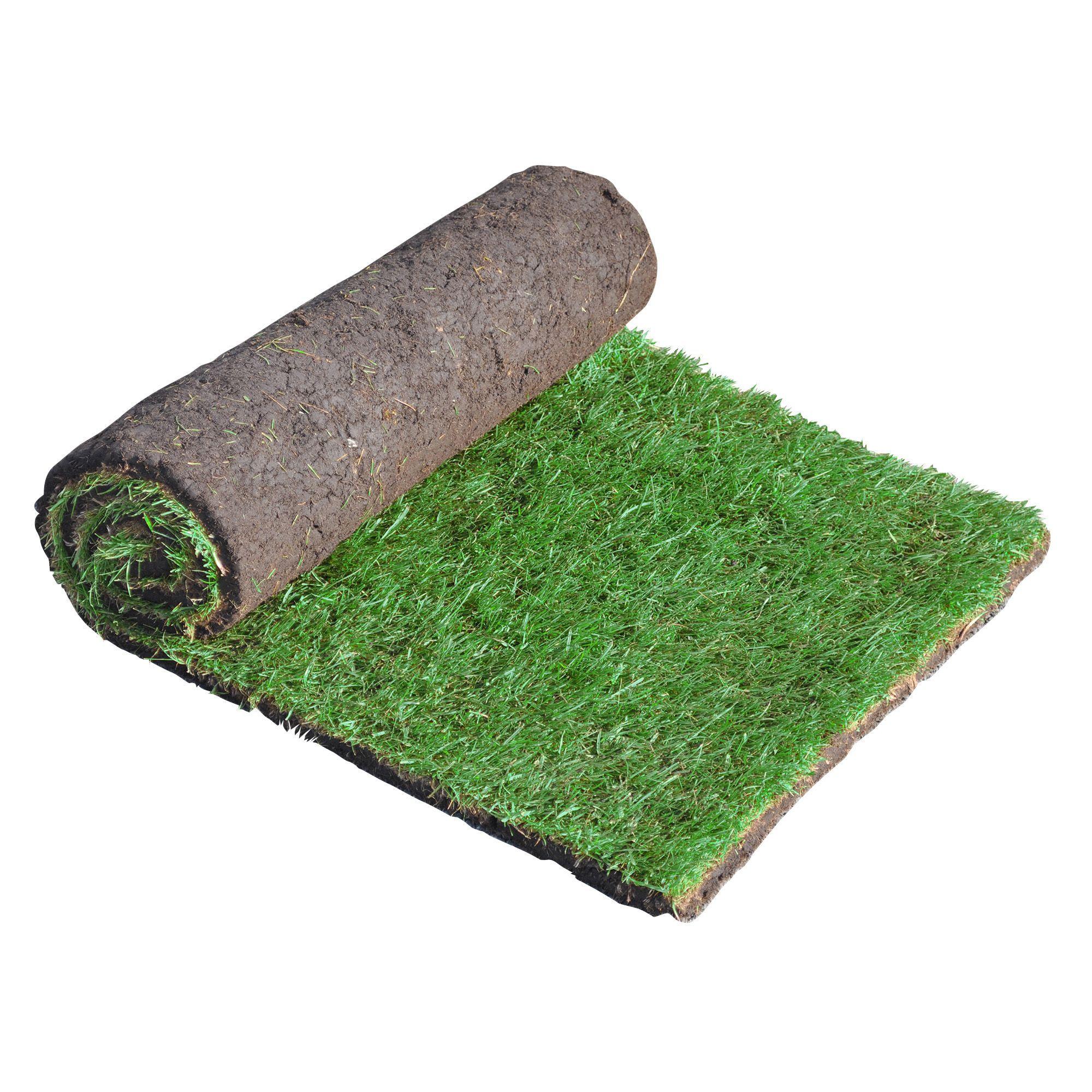 lawn turf w 610mm l 1370mm roll of 60 departments diy at b q. Black Bedroom Furniture Sets. Home Design Ideas