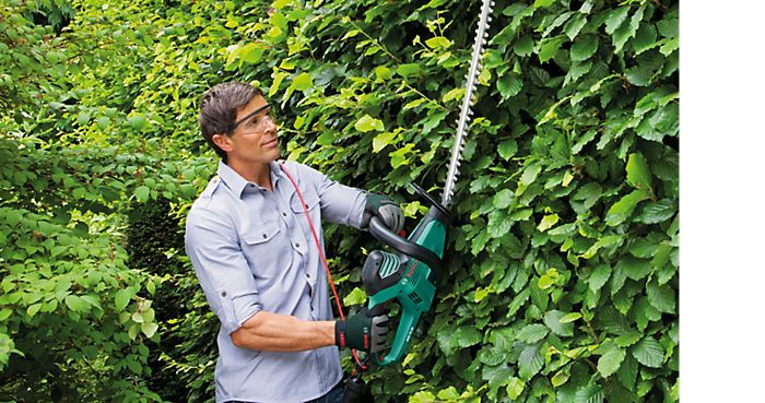 Man cutting tall hedge